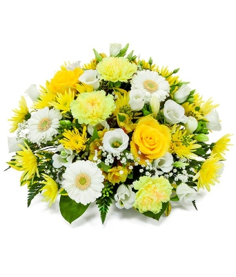 spring posy yellow and white